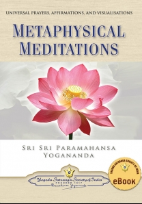 Metaphysical Meditations - English eBook