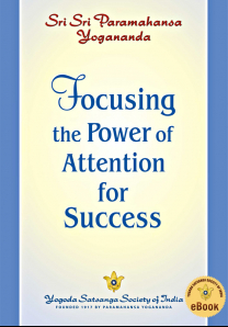 Focusing the Power of Attention for Success - English eBook